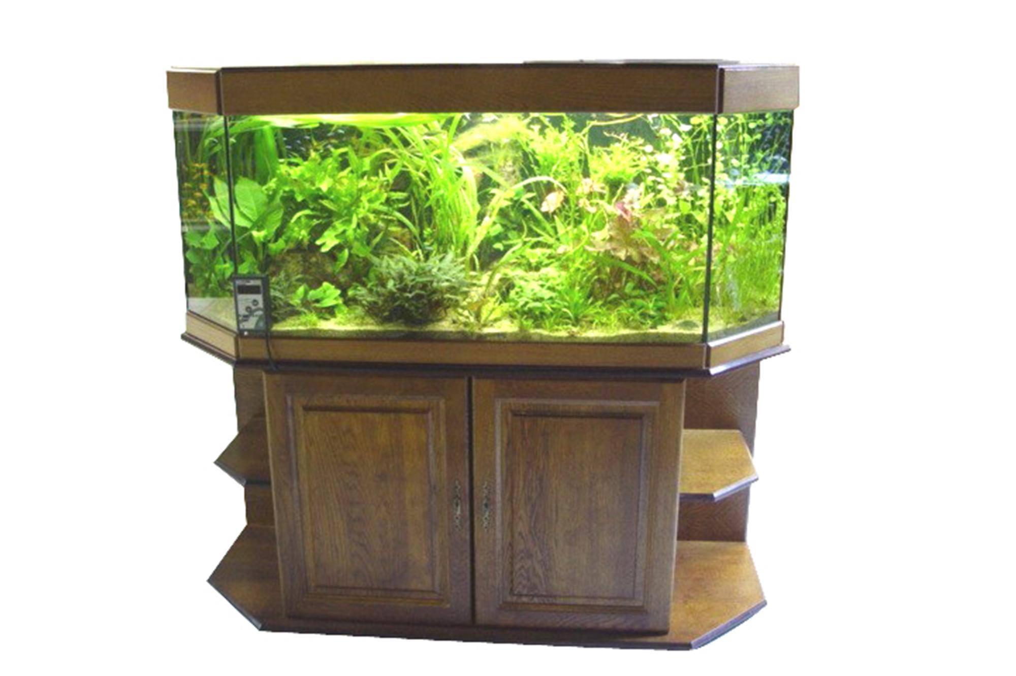 Aquariums et terrariums sur mesure