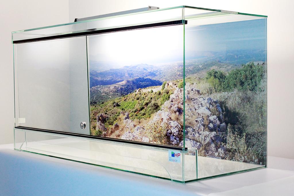 "Terrariums haut de gamme ""Made in Alsace"""