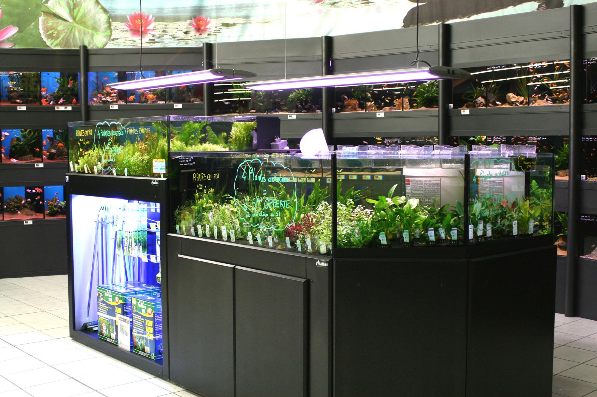 Bacs à plantes (1)