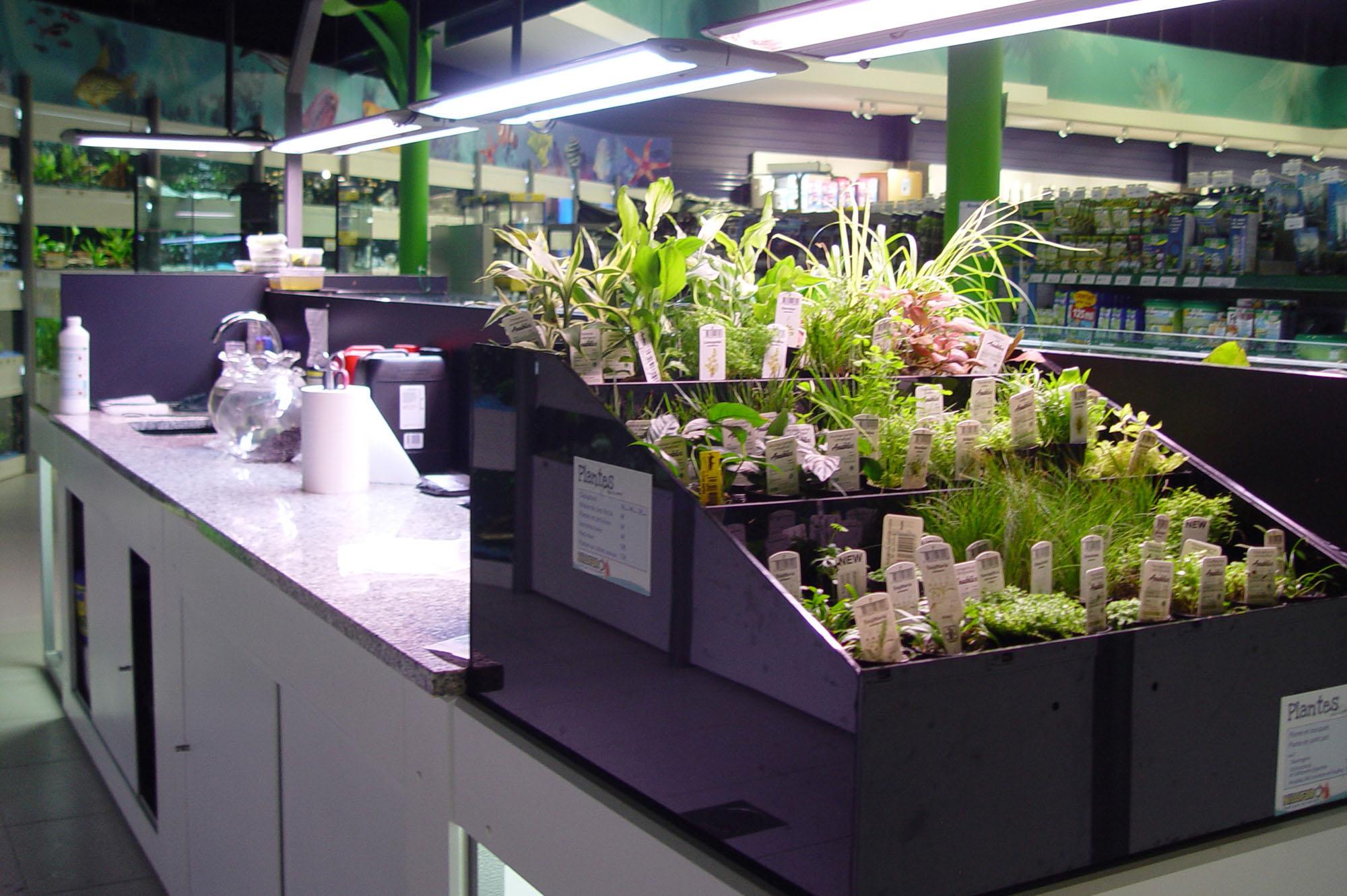 Bacs à plantes (4)