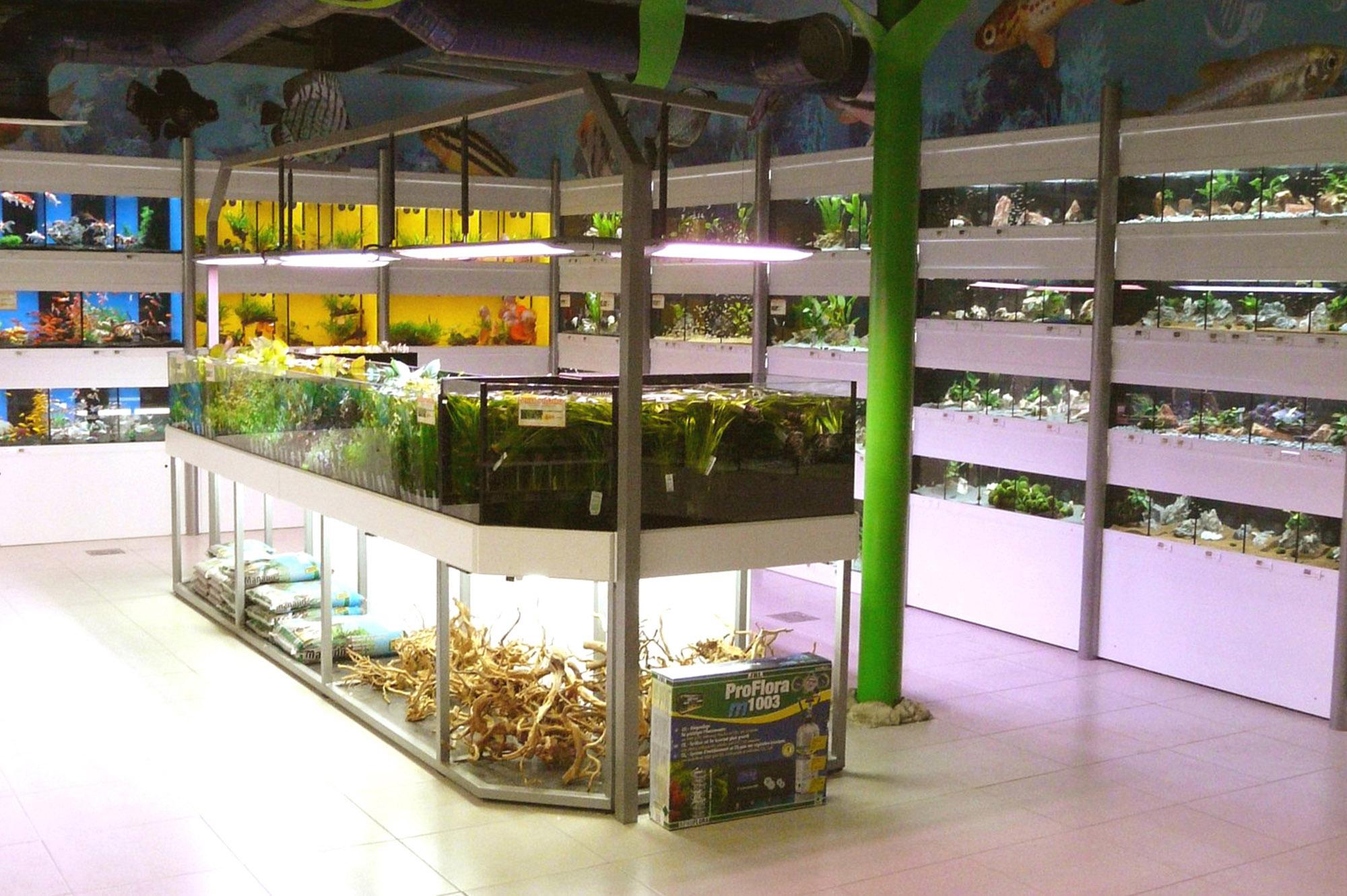 Bacs à plantes (5)