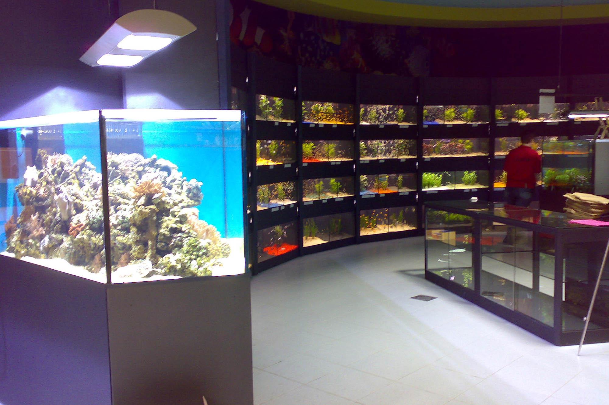 Installation eau douce marine (3)