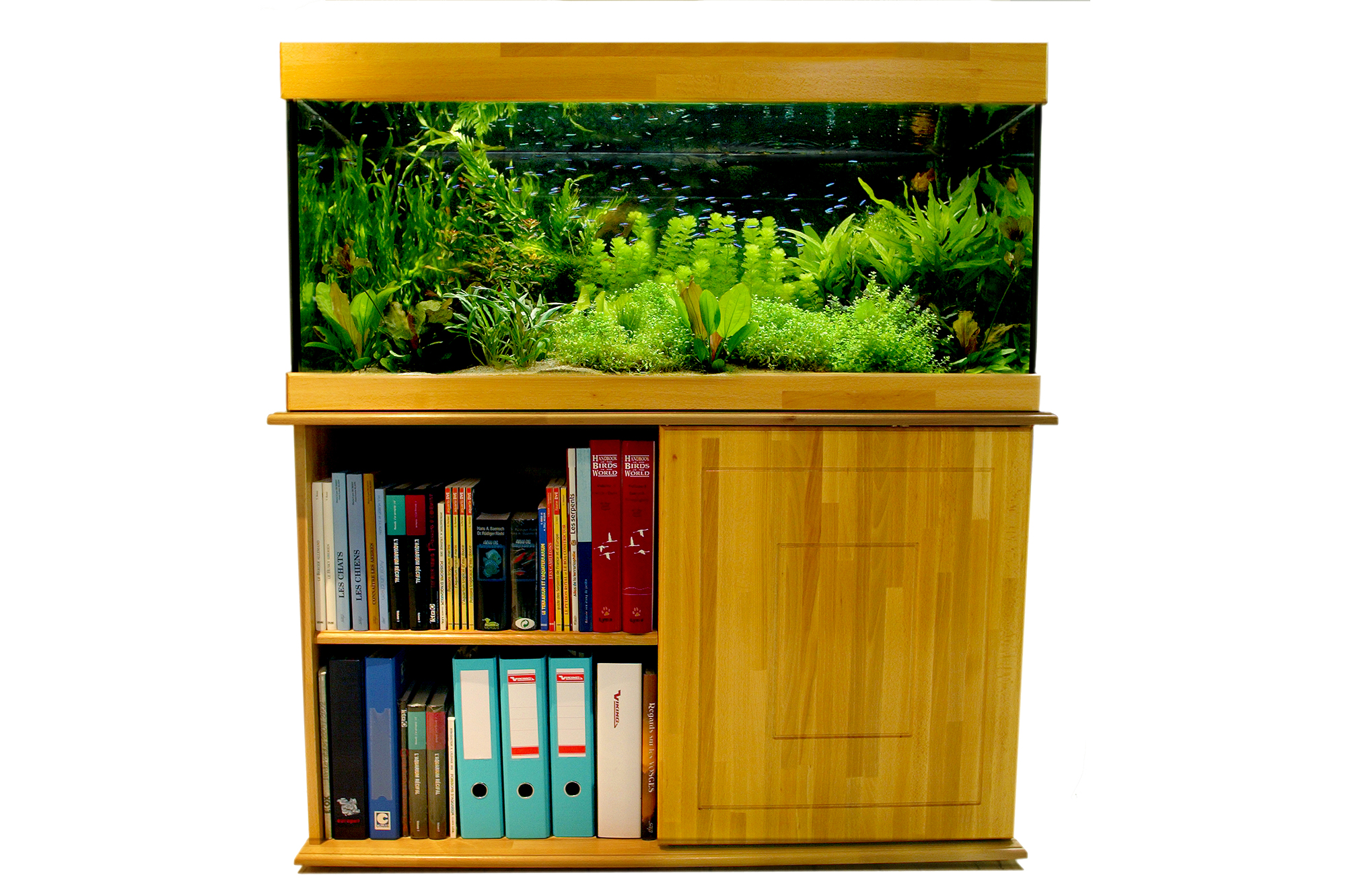 Table Basse Terrarium A Vendre nos prestations - hp aquarium